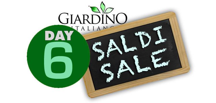 SaldiDay6