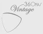 logo 360 vintage