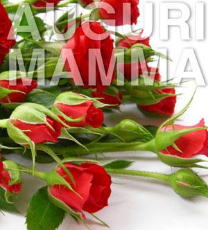 roserosseMamma