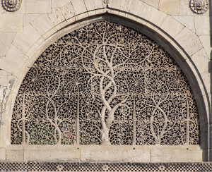 Tree of Life in India